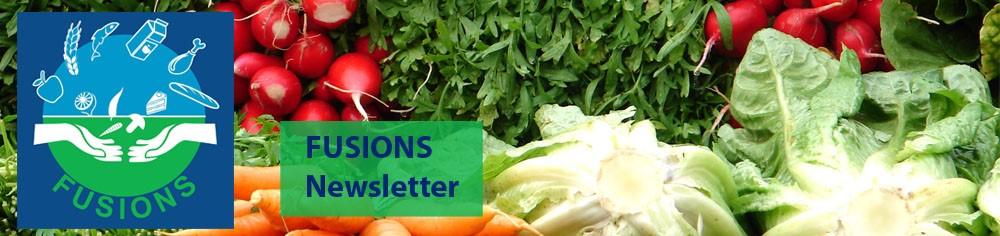 EU FUSIONS-newsletter
