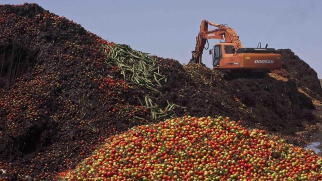 compost--644x362